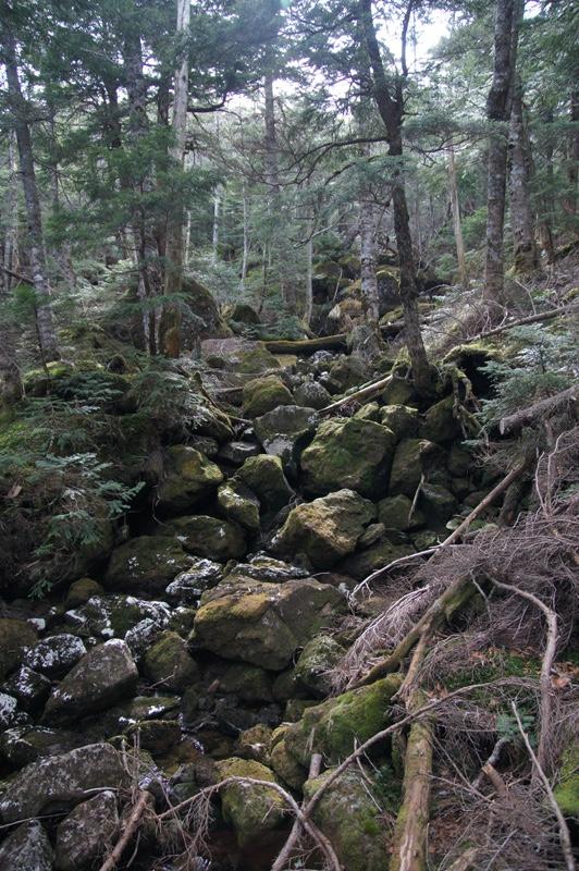 天狗岳登山写真1