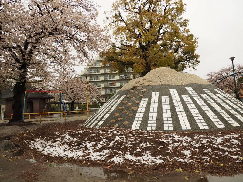 北千住の桜🌸